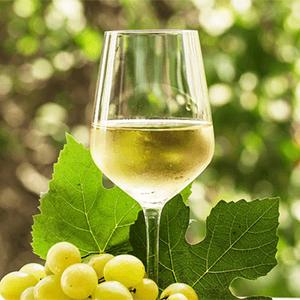 Κρασί - Λευκό